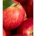 Legume/ Fructe